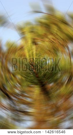 Blurred twist filter photo of forest, Plant out of focus, Natural background