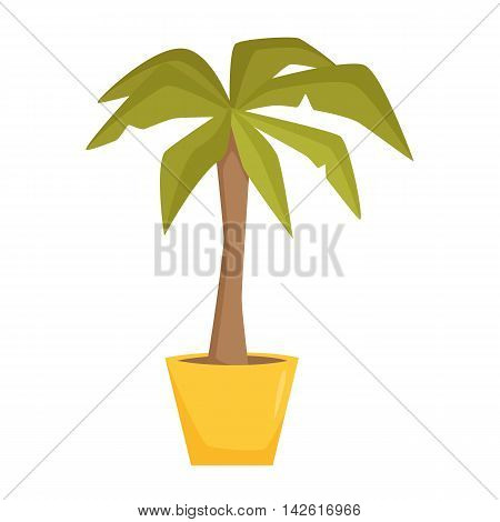 Palm tree in pot. Interior home and office potted plant. Houseplant cartoon vector illistration. Interior decoration. Flowerpot drowth and gardening.