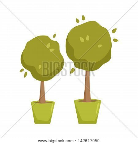 Myrtle in pot. Interior home and office potted plant. Houseplant cartoon vector illistration. Interior decoration. Flowerpot drowth and gardening.