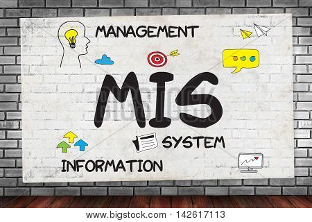 Mis  Management Information System  Data Development Information And Mis