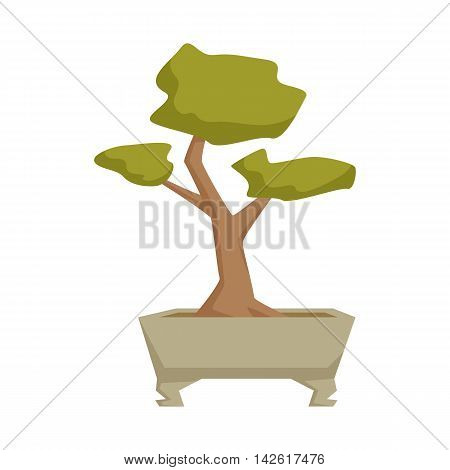 Bonsai in pot. Interior home and office potted plant. Japanese houseplant cartoon vector illistration. Japa interior decoration. Flowerpot drowth and gardening.