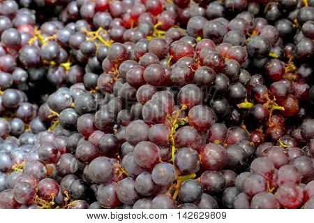 grape Beauty Seedless background.ready for sale in the market