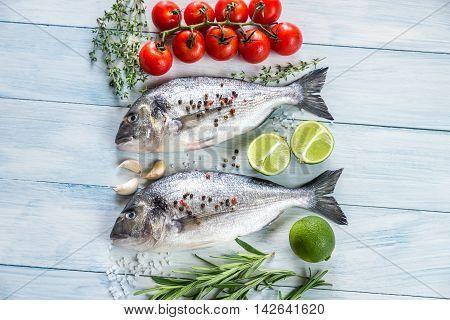 Dorade Royale Fish