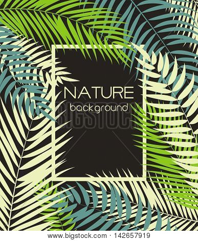 Beautiful Palm Tree Leaf  Silhouette Background Vector Illustration EPS10