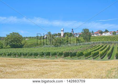 View to Wine Village of Zell im Zellertal in Wine region of Rheinhessen,Rhineland-Palatinate,Germany