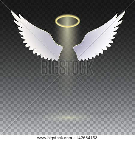 Angel wings with golden halo hovering on the transparent background. The symbol of faith, religion, mysticism, magic, magic and miracles. Wings and golden halo.