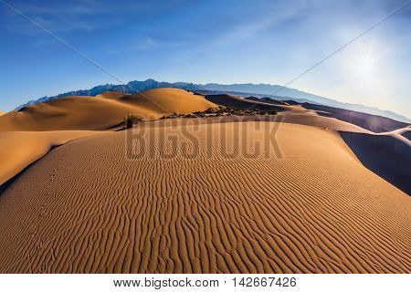 Bizarre twists of orange sand dunes. Mesquite Flat Sand Dunes. Bright sunny morning in a picturesque part of Death Valley, USA