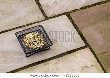 Ground bird feeder full of seeds, placed on a garden patio