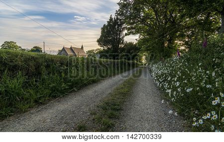 A deserted country path, with wild flowers growing in the verge and a quaint church on the horizon