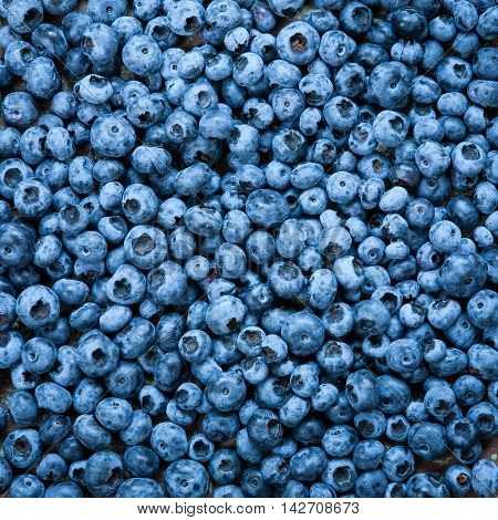 Ripe blueberries on wooden table close up