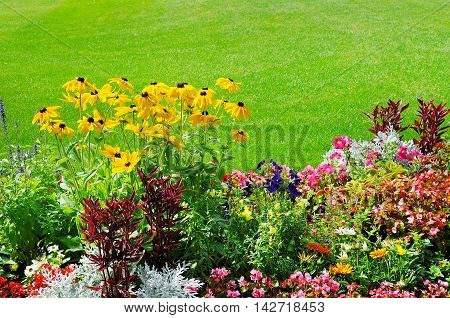 beautiful summer flower bed and green lawn