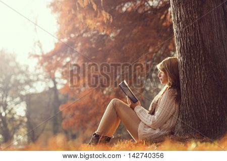 Beautiful young brunette sitting on a fallen autumn leaves in a park reading a book