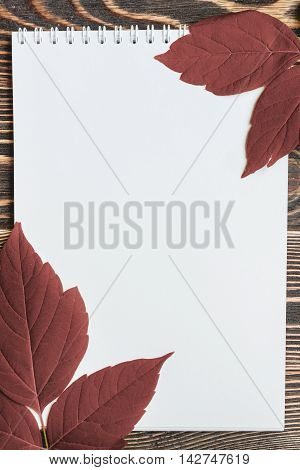 Copy-space Autumn Leaf with Blank Sheet on Wooden Table.