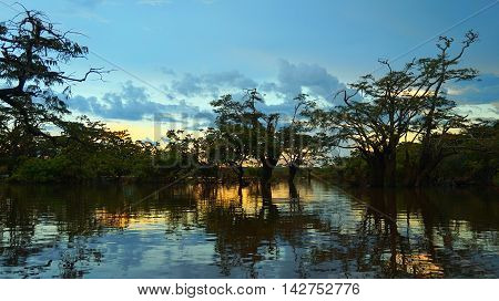 Sunset in Cuyabeno lagoon in the Ecuadorian Amazon