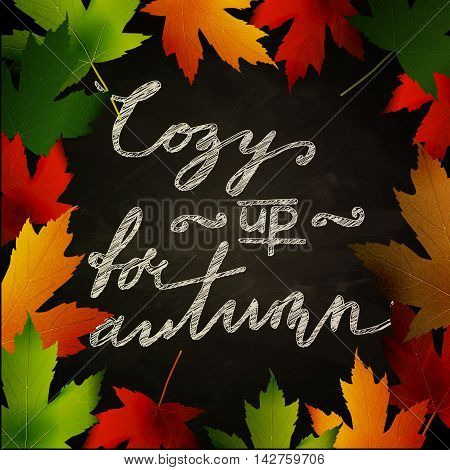 Frame of autumn leaves painted on black chalkboard. Sketch, design elements with Cozy up for autumn handwritten words. Vector illustration.