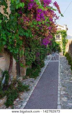 Alley In Saint Paul De Vence, France