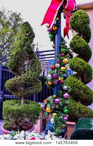 Trimmed Bushes Tree
