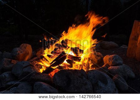 Photo of Camp fire in the summer night