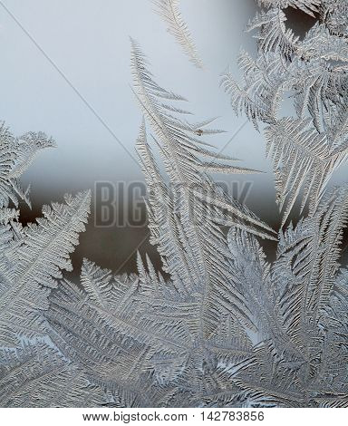 Magic Frost