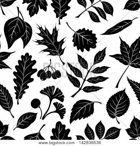 Seamless Nature Background with Black Pictogram Tree Leaves, Oak, Iberian Oak, Raspberry, Willow, Liquidambar, Hawthorn, Aspen, Ginkgo Biloba, Elm Karagach, Birch, Ash, Chestnut and Sambucus. Vector