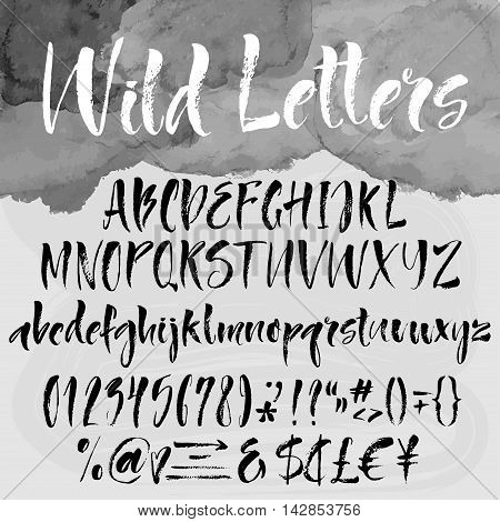 Wild letters - roman alphabetical set. Uppercase. lowercase digits money symbols special characters. Calligraphic handwritten signs watercolor and brush texture on background.