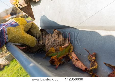 remove foliage in the fall of the gutter