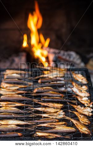 Warm smoked small fish in the front of fire