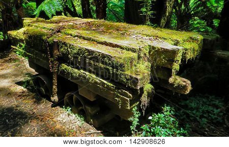 Old wooden planks with moss growing in the forest