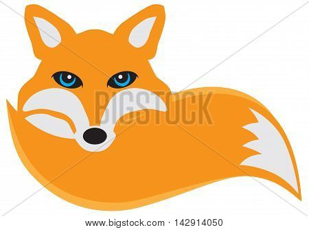 Fox curled up its tail color vector illustration