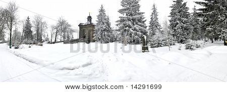 Panorama Of Winter Wonderland