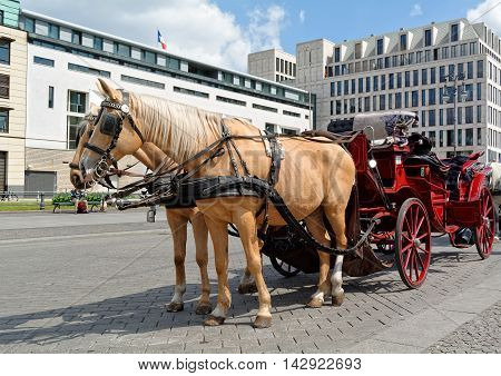 Two horses harnessed to the carriage, waiting for the next ride.
