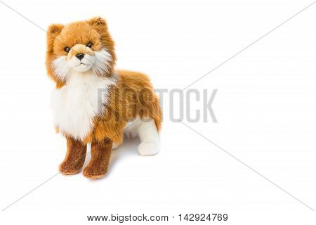 beautiful toy dog on white background Dog Plush toy for children : the gift to swain Valentine.
