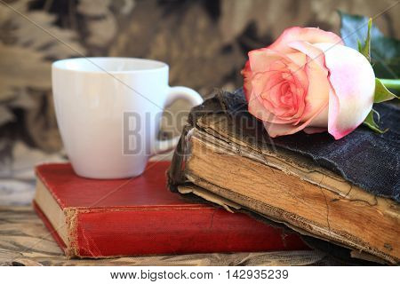 Pink Rose Laying on an Old Book