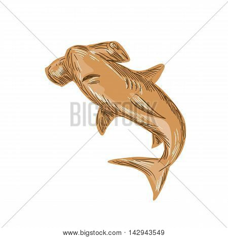 Drawing sketch style illustration of a hammerhead shark set on isolated white background.