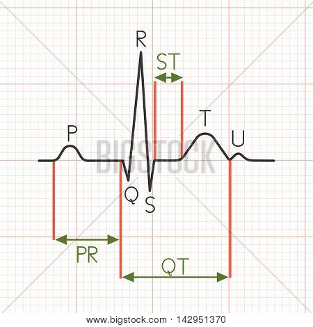 Vector cardiogram, electrocardiogram, heart beat graph, flat design