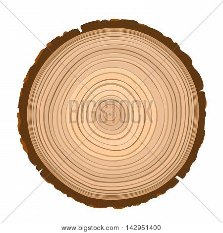 texture of sawn wood brown object isolated