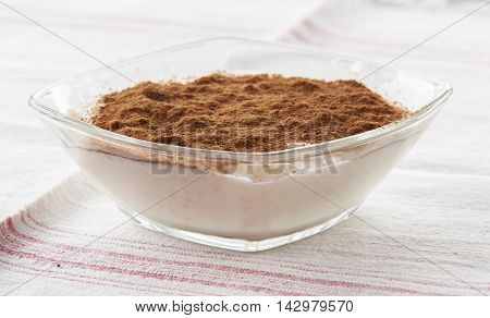 Creamy rice pudding sprinkled with cinnamon close up