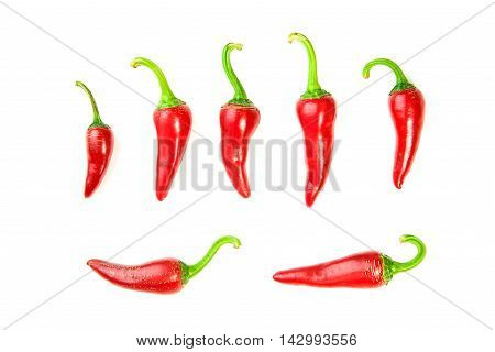 Many ripe red Chilli peppers on over white