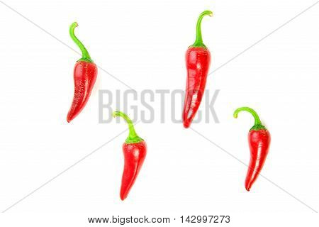 Four ripe red Chilli peppers on over white