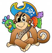 Pirate monkey with parrot on white background - vector illustration. poster
