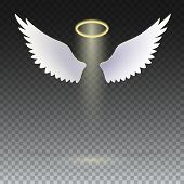 Angel wings with golden halo hovering on the transparent background. The symbol of faith, religion, mysticism, magic, magic and miracles. Wings and golden halo. poster