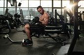 Young Strong Man In The Gym And Exercising Biceps With Dumbbells - Muscular Athletic Bodybuilder Fitness Model Exercise Bicep poster