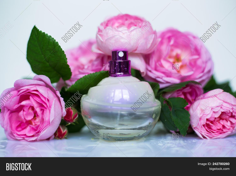 Perfume Bottle Pink Image Photo Free Trial Bigstock