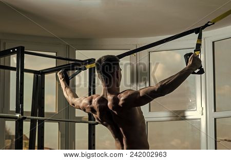 Man With Nude Torso, And Muscular Back In Gym Enjoy Training, Trx. Man With Torso, Sportsman, Athlet