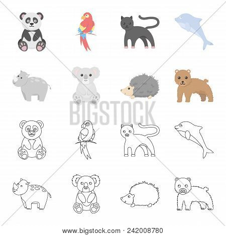 Rhino, Koala, Panther, Hedgehog.animal Set Collection Icons In Cartoon, Outline Style Vector Symbol
