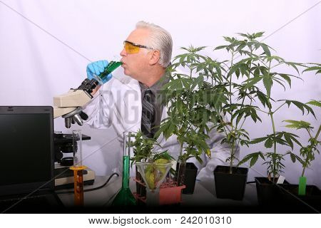 A Mad Scientist reacts after he drinks a concoction he mixed up in him Marijuana Lab. Doctor Sativa taste test his Youth Revitalizer Elixir to see if hi reverses the aging process.  poster