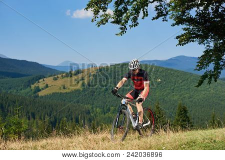 Young Athletic Sportsman In Professional Sportswear Cycling A Bike In High Grass Under Big Green Tre