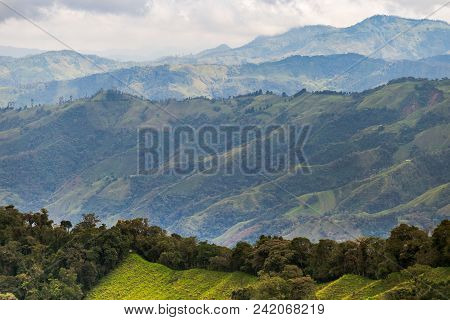 Lonely House In Mountains, Green Jungle In The Mountains, Colombia, Latin America