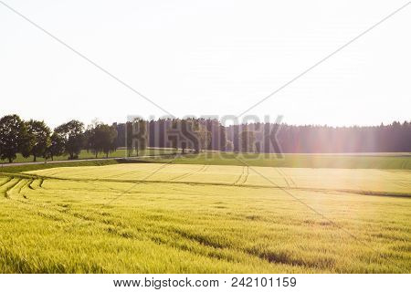 Landscape In Bavaria, Upper Palatinate, Country, Idyllic