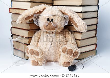 A Toy Rabbit In Protective Glasses With Beakers And Flasks Sits Near A Pile Of Books.